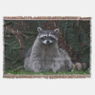 森林アライグマの写真 毛布