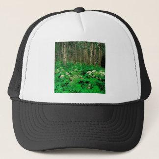 森林ハナウドの震動《植物》アスペン キャップ