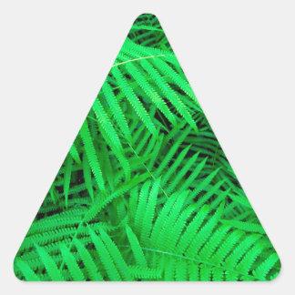 森林ハンモックのFatchafalaya盆地ルイジアナ 三角形シール