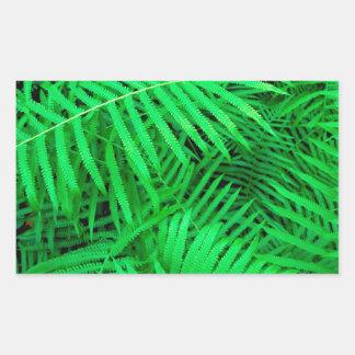 森林ハンモックのFatchafalaya盆地ルイジアナ 長方形シール