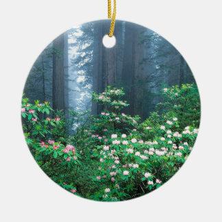森林レッドウッドの咲くシャクナゲ セラミックオーナメント
