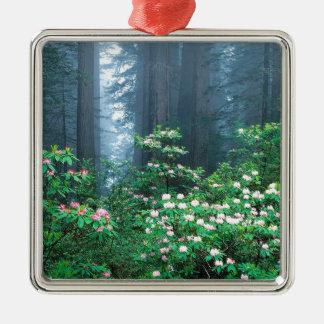森林レッドウッドの咲くシャクナゲ メタルオーナメント
