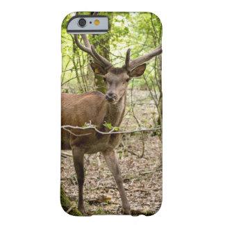 森林及びシカ BARELY THERE iPhone 6 ケース