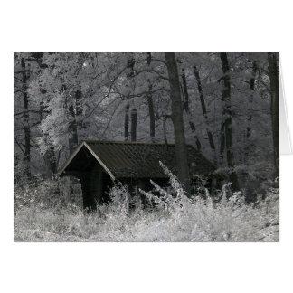 森林小屋、赤外線写真 グリーティングカード