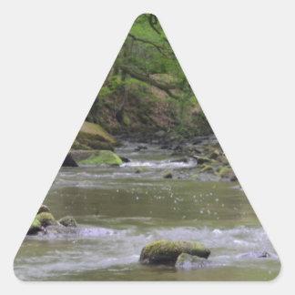 森林小川 三角形シール