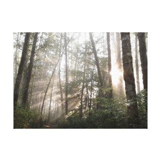森林平静 キャンバスプリント