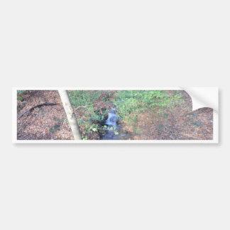 森林床の落ちたな葉 バンパーステッカー