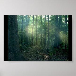 森林戯曲 ポスター