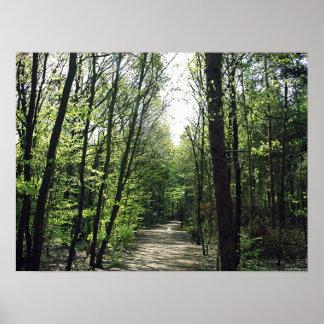 森林方法 ポスター