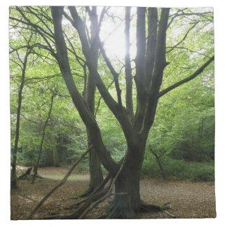 森林日光のナプキン ナプキンクロス