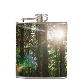 森林景色の夕べの日光 フラスク