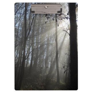 森林朝の霧のクリップボード