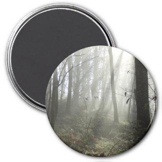 森林朝の霧の大きい円形の磁石 マグネット