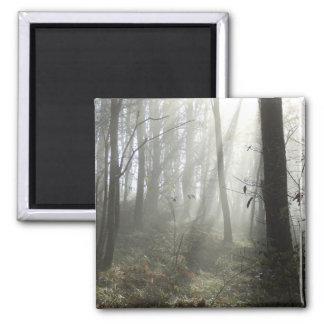 森林朝の霧の正方形の磁石 マグネット