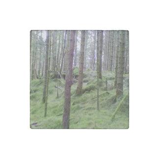 森林木多くのstor.jpg ストーンマグネット