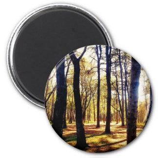森林木 マグネット