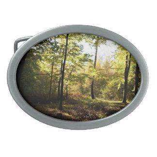 森林林間の空地 卵形バックル