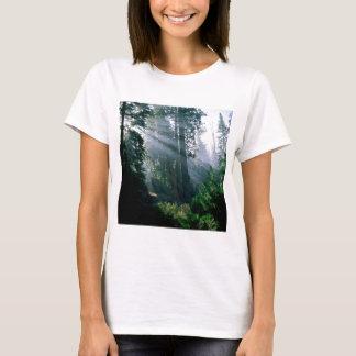 森林森の驚異 Tシャツ