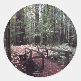 森林橋フンボルトのレッドウッドの州立公園 ラウンドシール