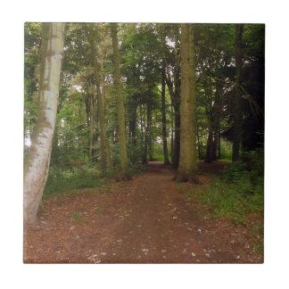 森林歩行 タイル