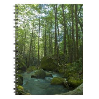 森林脱出 ノートブック