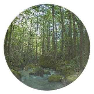 森林脱出 プレート
