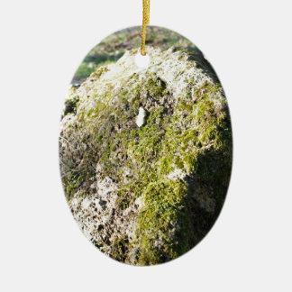 森林芝生の大きい石造りのコケむした大きい石 セラミックオーナメント