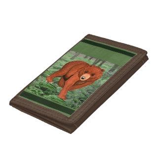 森林茶色の札入れのヒグマ