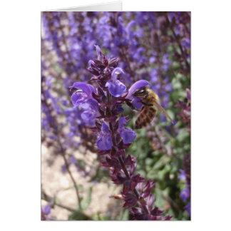 森林賢人の蜂蜜の蜂 カード
