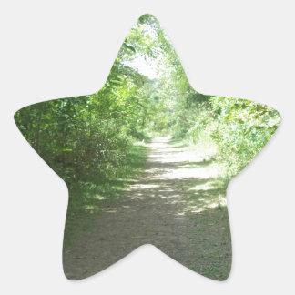 森林道 星シール