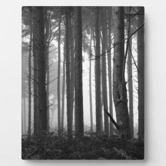 森林霧14 フォトプラーク
