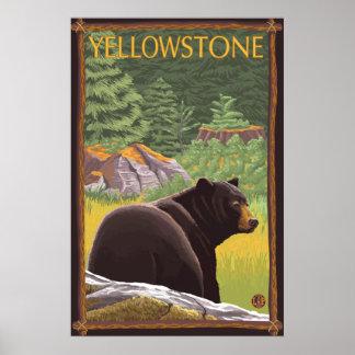 森林-イエローストーン国立公園のツキノワグマ ポスター