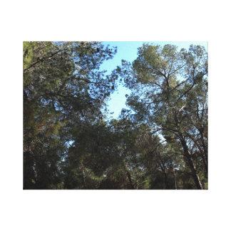 森林 キャンバスプリント
