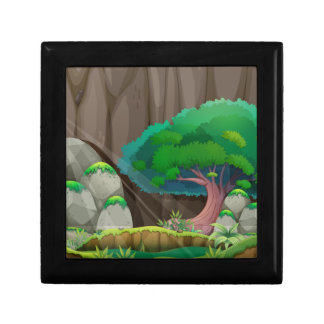 森林 ギフトボックス