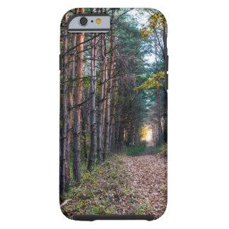 森林 ケース