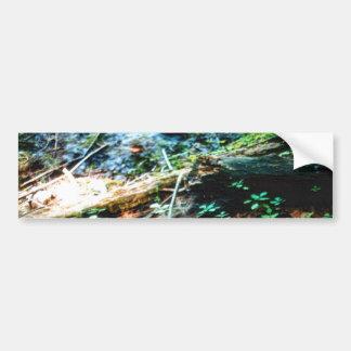 森林 床 バンパーステッカー
