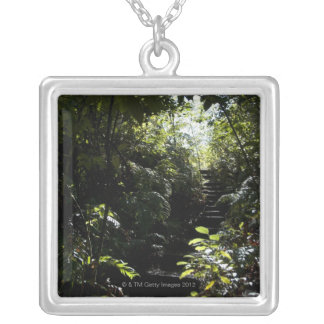 森林、日光の素朴な階段か歩道 シルバープレートネックレス