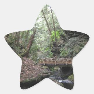 森林 星シール