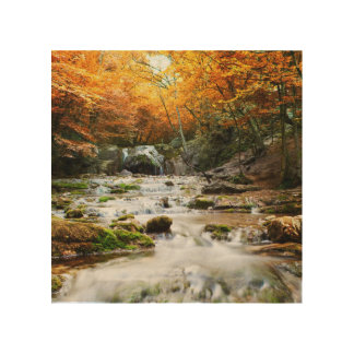 森林、秋の美しい滝 ウッドウォールアート