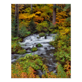 森林、秋、オレゴンを通した川 ポスター
