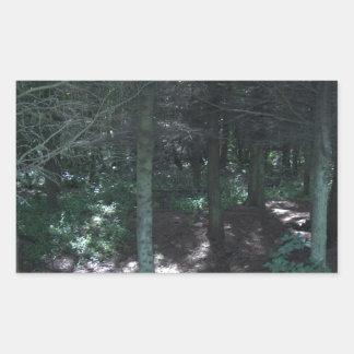 森林 長方形シール