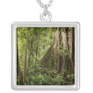森林、Bosque deパ、コスタリカを曇らせて下さい シルバープレートネックレス