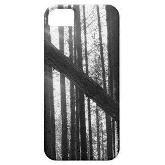 森林iPhoneの場合 iPhone SE/5/5s ケース