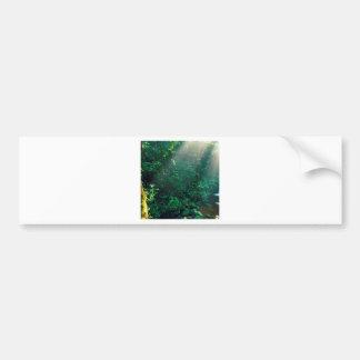 森林Monteverdeの雲コスタリカ バンパーステッカー