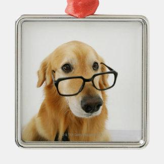 椅子に坐る犬の身に着けているタイおよびガラス メタルオーナメント