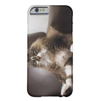 椅子に坐る猫のポートレート BARELY THERE iPhone 6 ケース