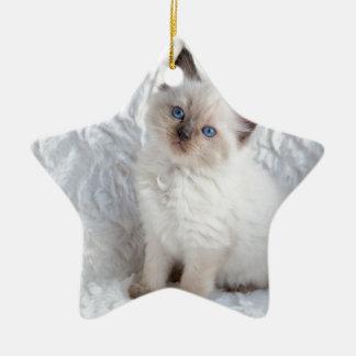 椅子の毛皮に坐っている1匹の若いragdoll猫 セラミックオーナメント