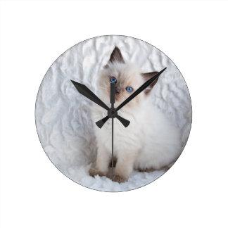 椅子の毛皮に坐っている1匹の若いragdoll猫 ラウンド壁時計