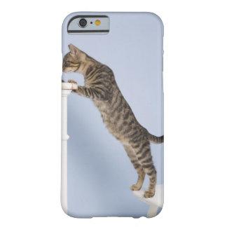 椅子、北デュッセルドルフの猫 BARELY THERE iPhone 6 ケース