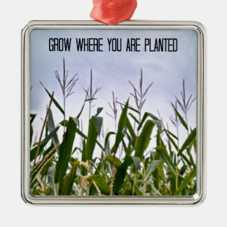 植わるところで育てて下さい メタルオーナメント
